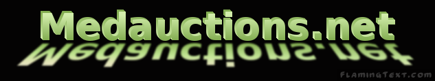 MedAuctions.net